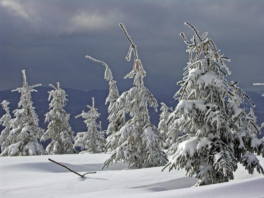Na narty w Czechach