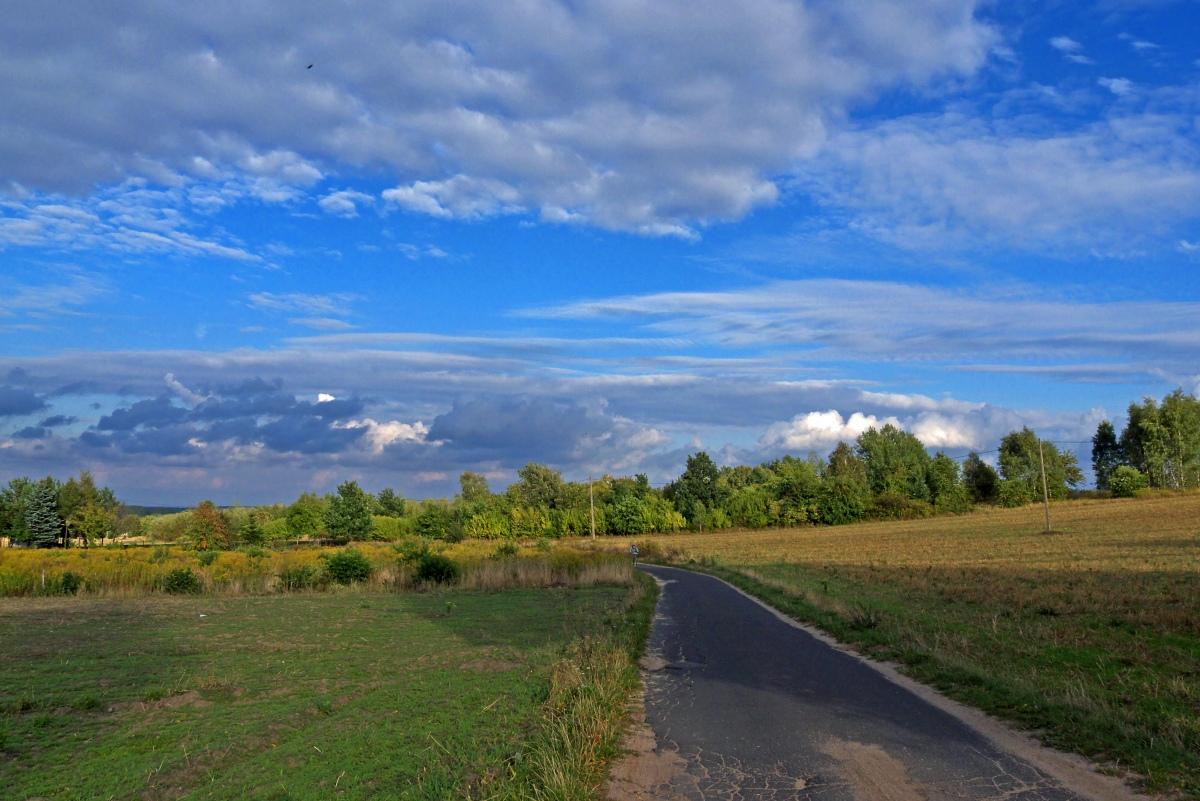 Wiekopomne odkrycie w Parku Krajobrazowym Wzniesień Łódzkich