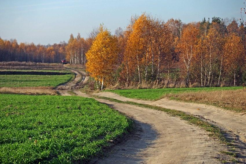 Parku Krajobrazowym Wzniesień Łódzkich