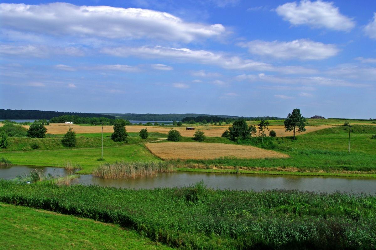 Rzeka Wel oraz Łosie i Lamy na spływie kajakowym