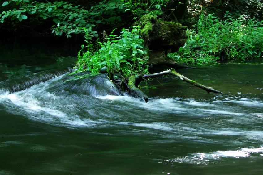 rzeka Wel