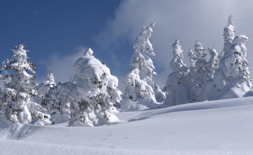 zima w Korbielowie