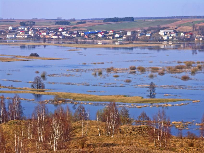 Okolice Łomży - rozlewiska Narwi