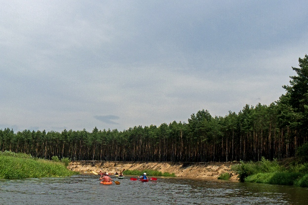 Pilica, czyli najładniejsza duża rzeka w Polsce