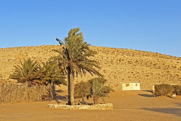 Negew pustynia