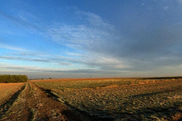 wieś, sieradzkie, pola