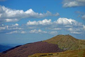 Dzikie Bieszczady – prawda, czy mit