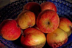 Read more about the article Wybór posiłku nie zawsze jest prosty