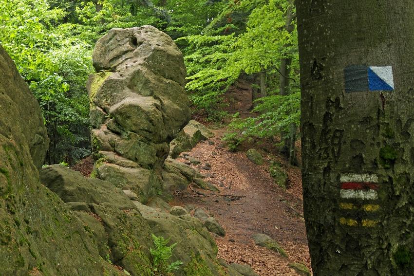 Góry Słonne Orli Kamień Ziemia Sanocka