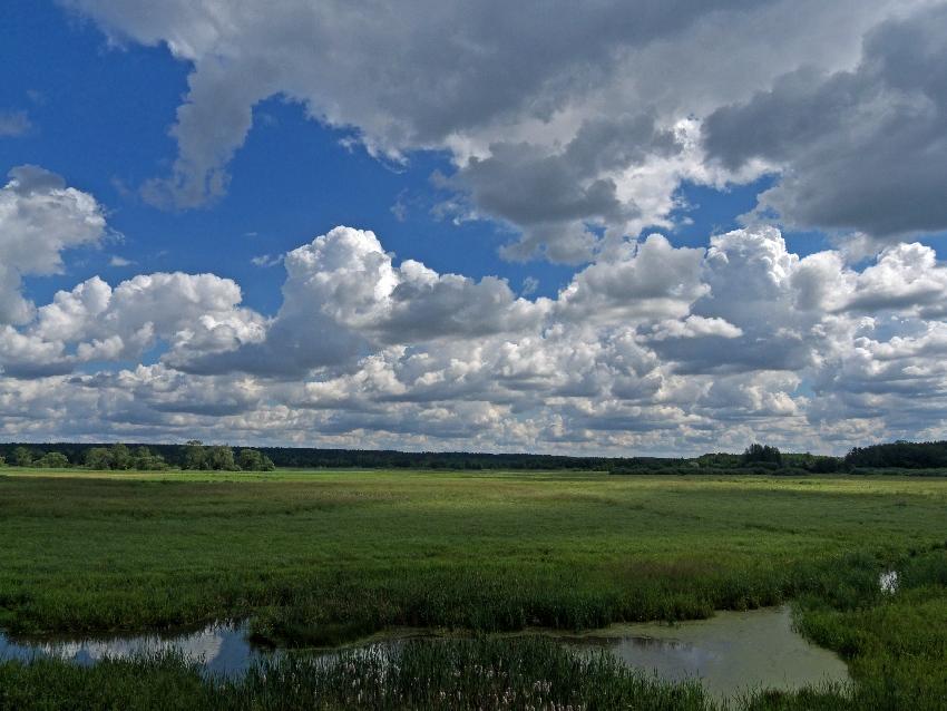 rzeka drweca krajobraz. Pojezierze brodnickie