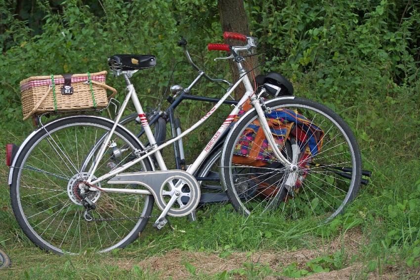 zorganizować wyjazd rowerowy