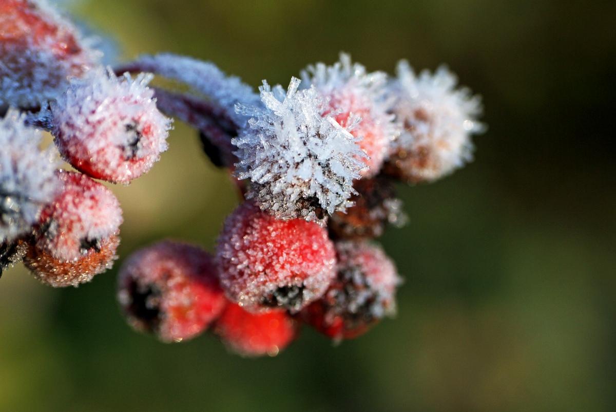 Gdy czujesz się nie na miejscu – zimowy spływ kajakowy