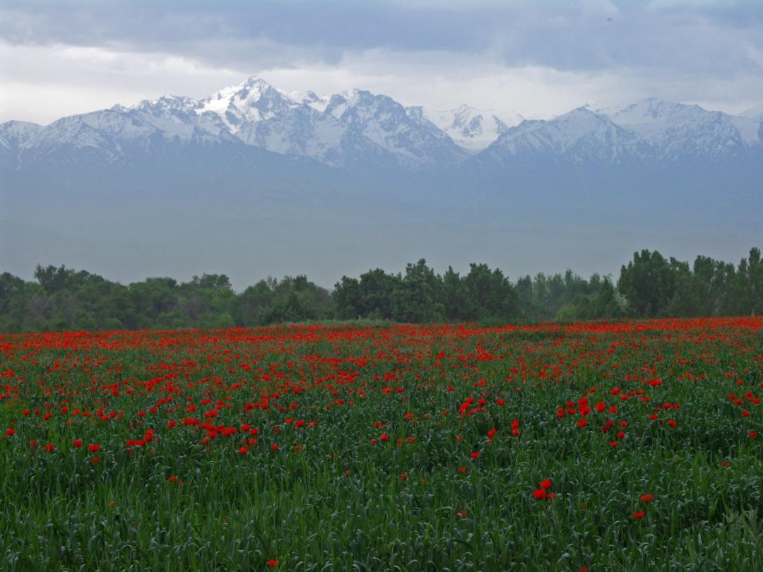 góry Kazachstan
