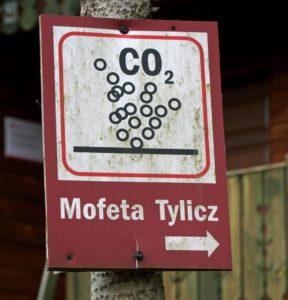 mofeta