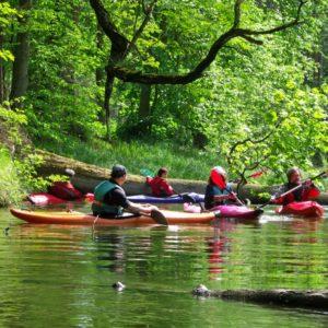 Pierwszy spływ kajakowy. Co warto wiedzieć, zanim znajdziesz się na rzece?