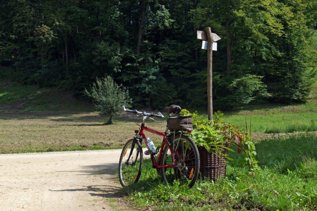 Park Mużakowski