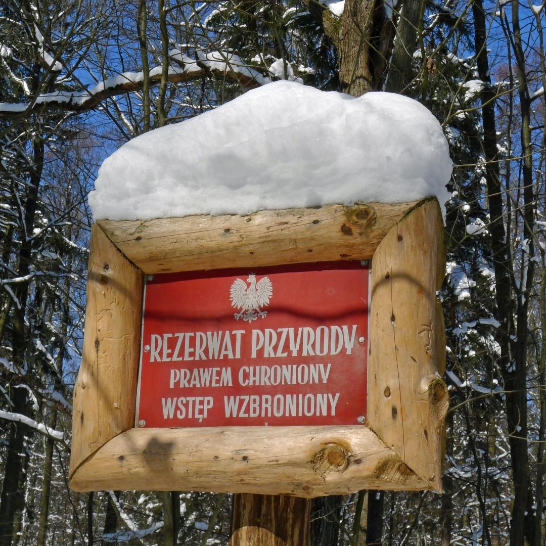 Okolice Łodzi na rowerze, na nartach i na spacerze
