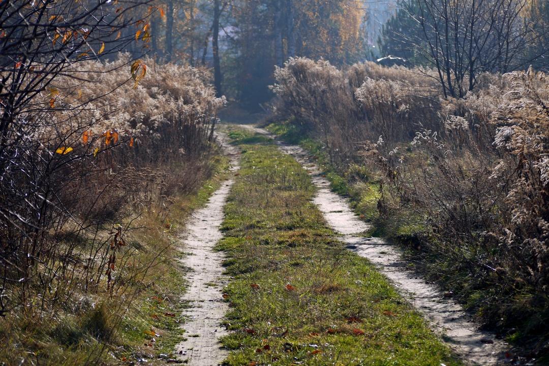 Okolice Łodzi jesienią