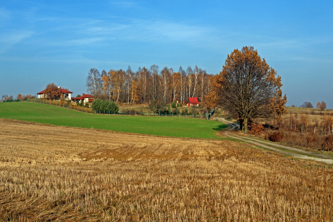 okolice Łodzi