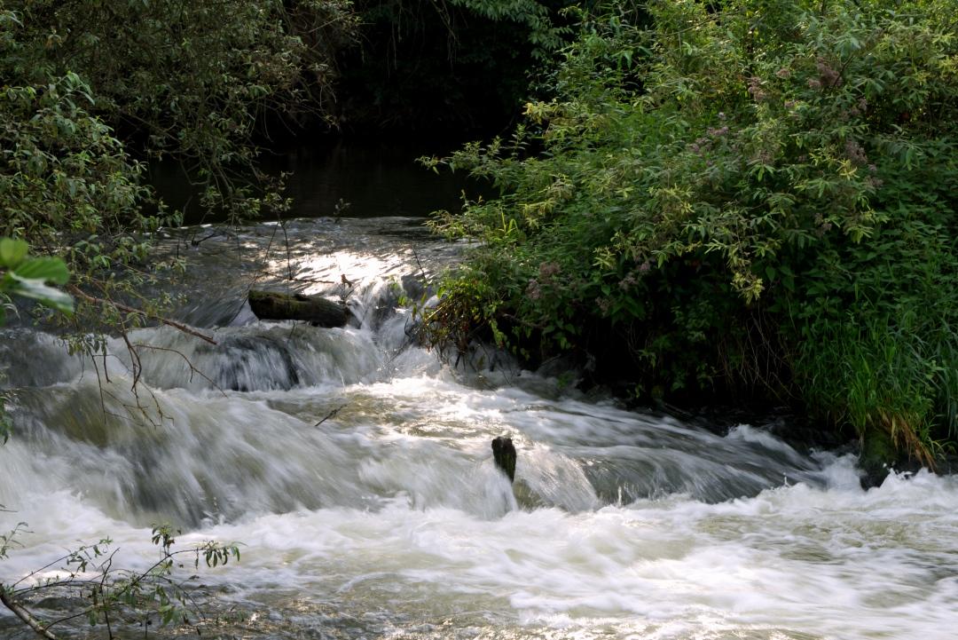 Park Krajobrazowy Warty i Widawki