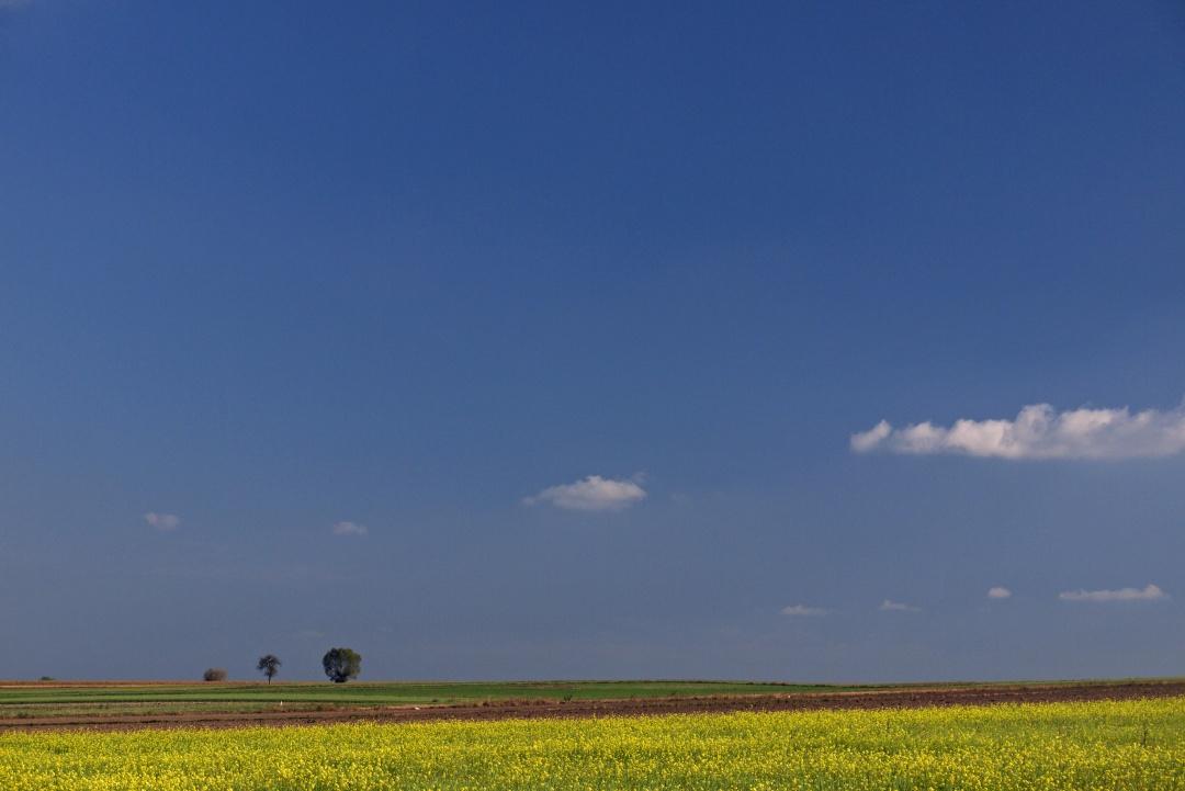 Park Krajobrazowy Międzyrzecza Warty i Widawki
