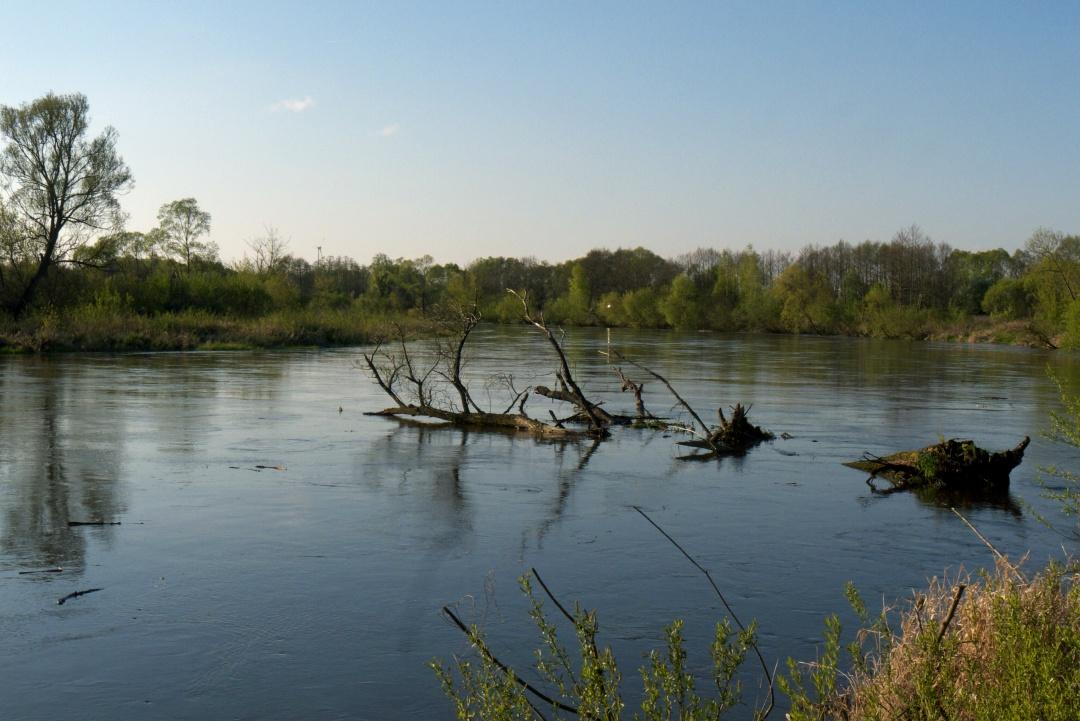 Warta w okolicach Burzenina
