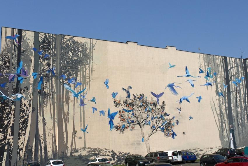 Niebieskie Ptaki na Pomorskiej
