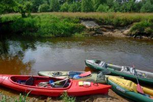 Gdzie na kajak? 10 pięknych rzek w centrum Polski