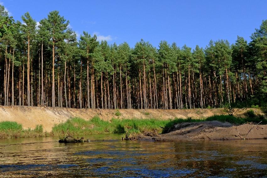 gdzie na kajak? - rzeka Czarna