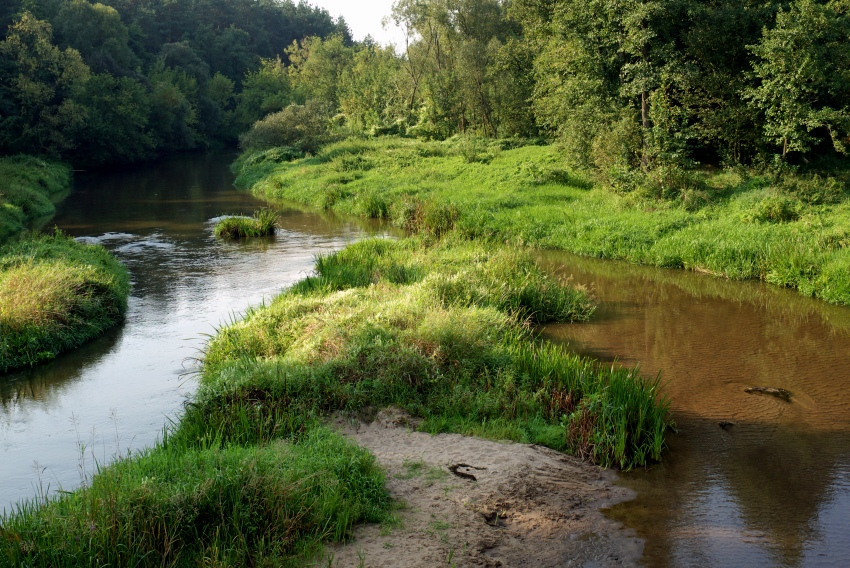 Rzeka Radomka