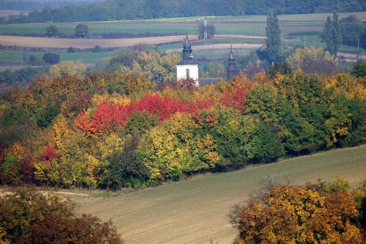 kościół w Czarnocinie