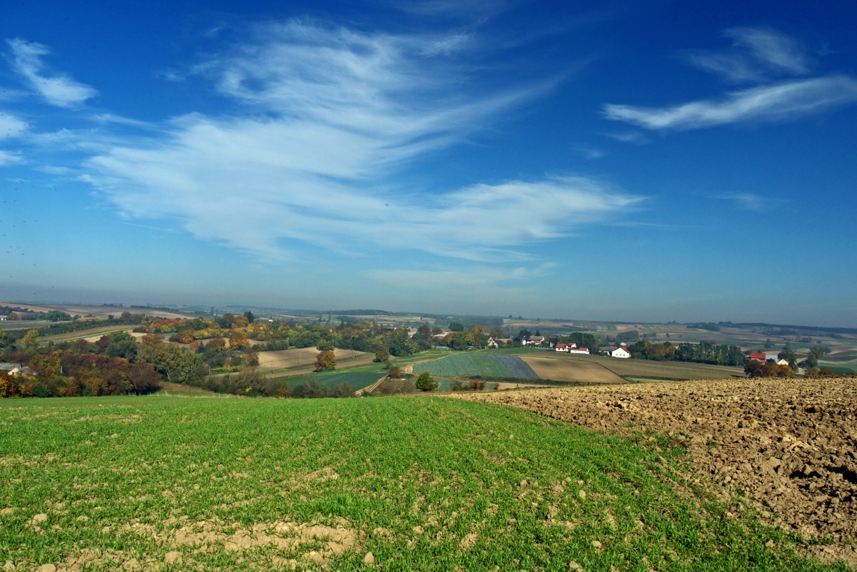 atrakcje Ponidzia - krajobrazy