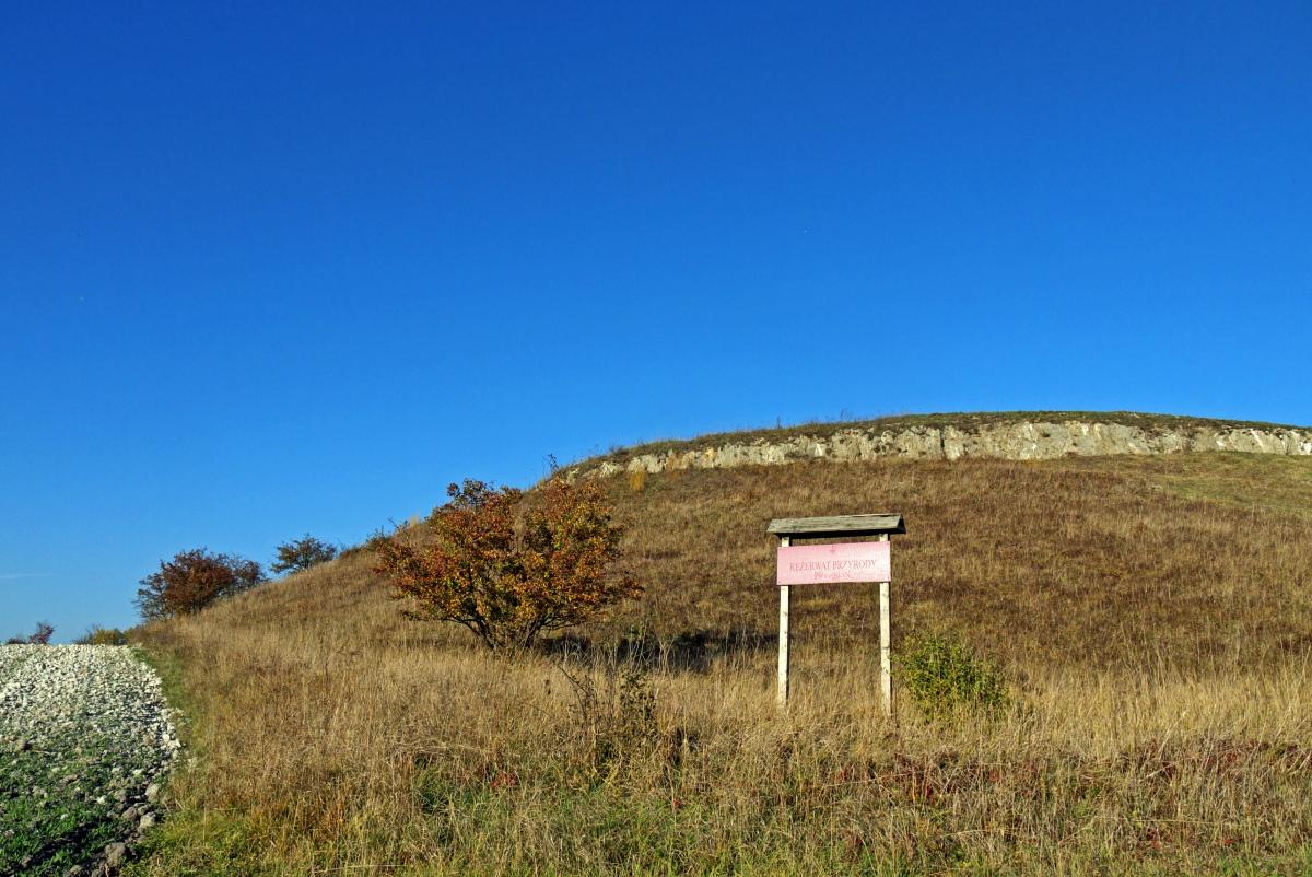 Rezerwat Przęślin atrakcje Ponidzia