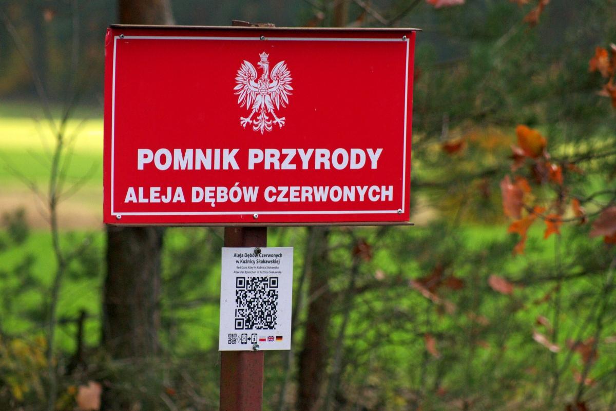 Odlotowe miasto. Co warto zobaczyć w Wieruszowie i okolicach?