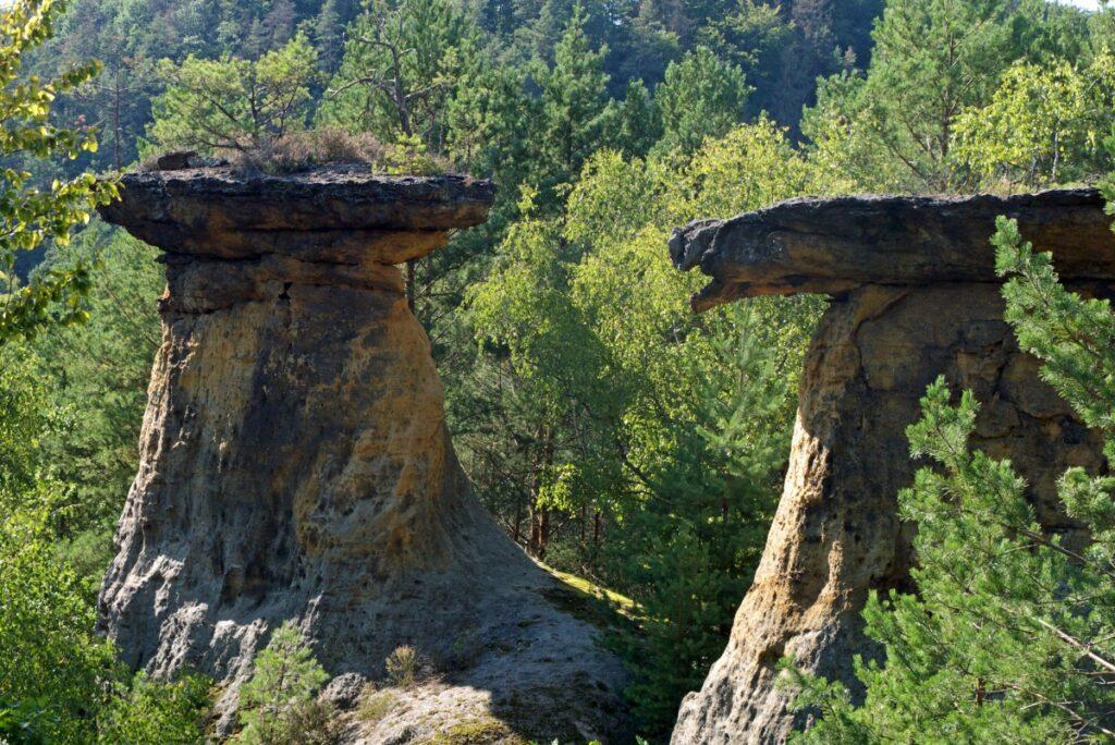 Największe atrakcje Kokorinsko