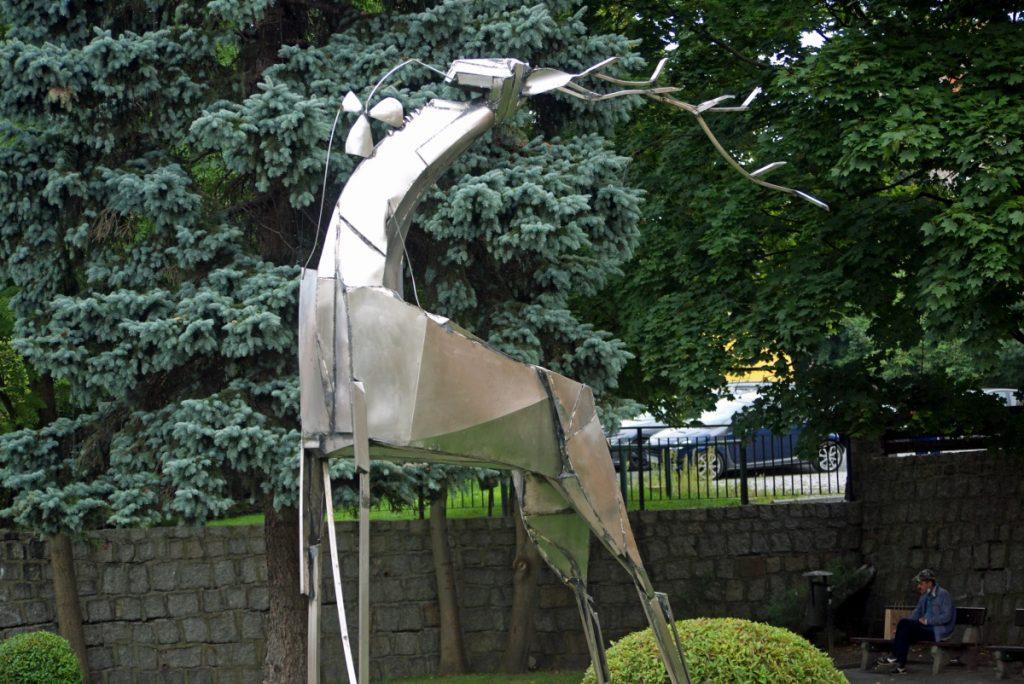 Jeleń w Jeleniej
